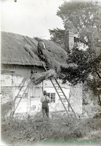 Thatching near Leominster