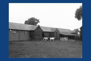 Harriott's Farm, West Barnes: Also known as Moat Farm