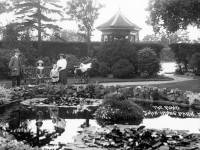 John Innes Park: View of the pond