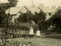 Elm Nursery, Mitcham