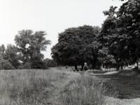 The Pound, Wimbledon Common