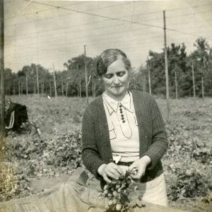 CJS027 Hop picking, c.1930s.jpg