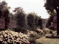 Almshouses, Camp Road, Wimbledon