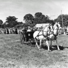 1949 Horse Drawn Coaches at the Houghton Regis Gymkhana and Horse Show