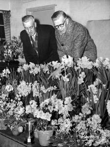 Mitcham & District Horticultural Society: Spring Bulb Show