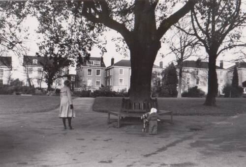 Bury Meadow, photograph, c1980, Exeter