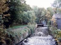 Ravensbury Park: Mini Weir
