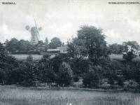 Distant view of the windmill, Wimbledon Common