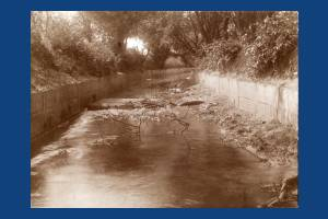 Beverley Brook, West Barnes