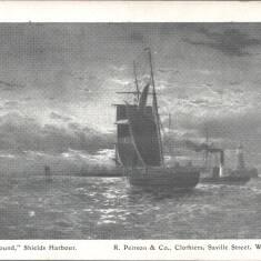 """""""Homeward Bound"""", Shields Harbour"""