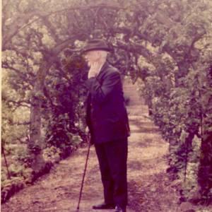 Albert Ernest Powell