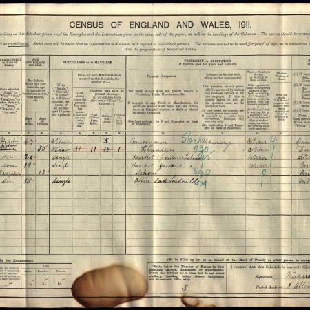 1911 Census - 8 Allen's Terrace, Church Road, Mitcham