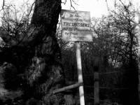 Warning notice, The Royal Wimbledon Golf Club, Wimbledon Common