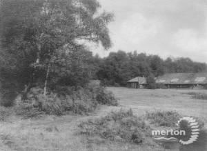 Wimbledon Common: Area near the farm