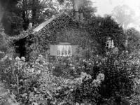 Commonside East: Mr Rice's Cottage & Garden