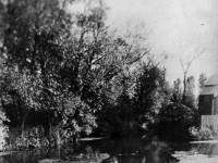 The River Wandle, looking west towards Copper Mill