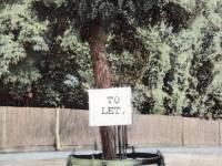 Lovers Seat, Wimbledon Common