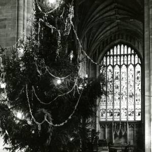 A Christmas tree in Hereford Cathedral.