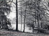 Peek's Lake, Wimbledon Common