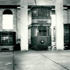Trams in the Depot