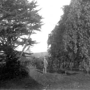 G36-326-20 Man in garden with trees.jpg