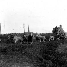 Harton Cemetery