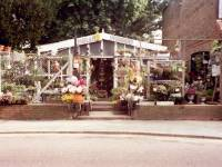 Kingston Road, No. 246