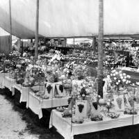 Southport Flower Show  Display in 1926
