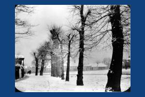 Langdale Walk, Mitcham:  pictured in the snow