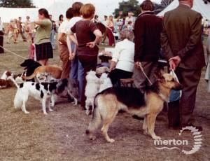 Dog show at the Merton Show, Morden Park
