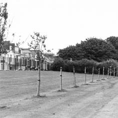 South Marine Park and Seafield Terrace