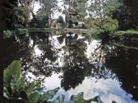 Wandle Watermeads