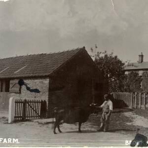 POP007 Court Farm, Brockhampton.jpg