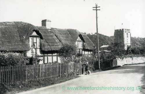 Aymestry, row of thatched houses