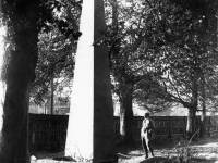The obelisk in the grounds of The Canons, Lower Mitcham