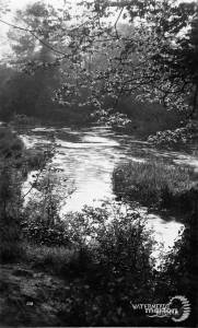 Watermeads, Wandle