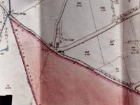 1865 map of Coombe Bridge and the Lodge, West Barnes