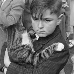 A young boy holding his cat at the Holy Trinity annual pet service
