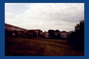 Bodnant Gardens, SW20, West Barnes
