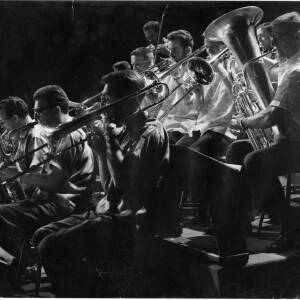 209 - Part of brass band playing at concert