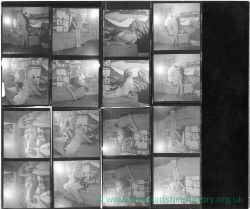 253-2 - Contact prints
