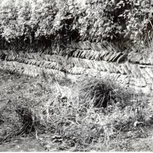 Edvin Loath, Anglo Saxon Wall, 1975