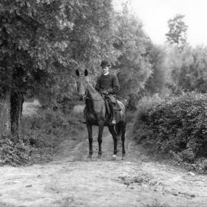 G36-310-11 Father as above seated on a hunter alone in the same lane.jpg