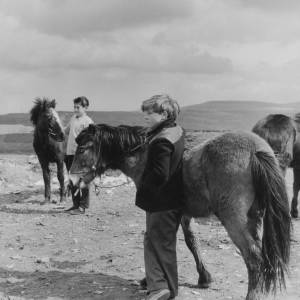 Welsh boys with Welsh Mountain Ponies