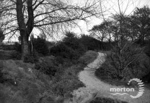 A footpath across Mitcham Common