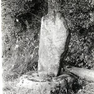 Sutton St Nicholas, Wergin's Stone