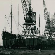 Discharging Timber at Tyne Docks