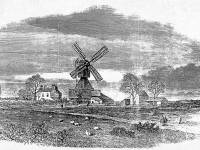 Lithograph featuring the windmill, Wimbledon Common