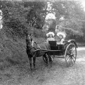G36-247-02 Girls in a governess cart.jpg