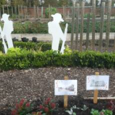 2020 November Remembrance Display in the Houghton Hall Kitchen Garden Houghton Regis
